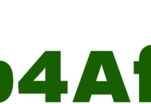 WEb4Africa, Internet, Domain Name