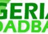 Broadband Nigeria, Internet