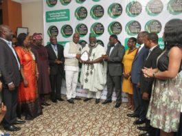 NIMES. Mobile Economy, Nigeria